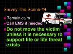 survey the scene 4