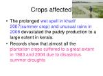 crops affected