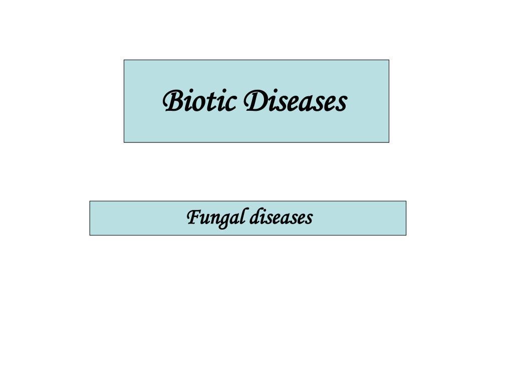 biotic diseases l.