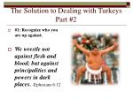 the solution to dealing with turkeys part 2