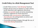 credit policy as a risk management tool