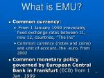 what is emu