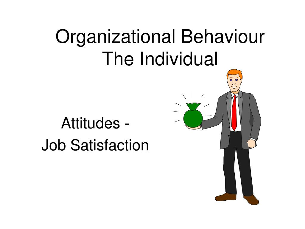organizational behaviour the individual l.