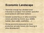 economic landscape
