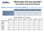 what does this tool provide summative assessment results