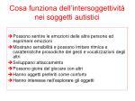 cosa funziona dell intersoggettivit nei soggetti autistici