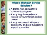 what is michigan service scholars