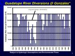 guadalupe river diversions @ gonzales