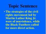 topic sentence24