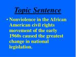 topic sentence27