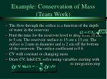 example conservation of mass team work