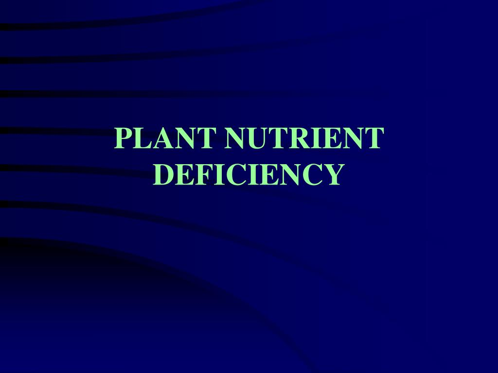 plant nutrient deficiency l.