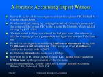 a forensic accounting expert witness