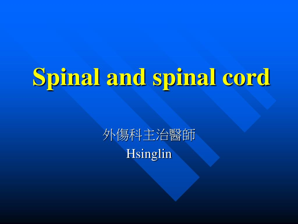 spinal and spinal cord l.