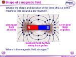 shape of a magnetic field