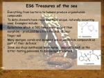 es6 treasures of the sea