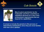 cub scouts25