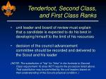 tenderfoot second class and first class ranks28