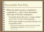 executable text files