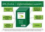 aml evolve implementation support