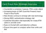 card fraud risk strategic overview