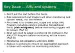 key issue aml and systems