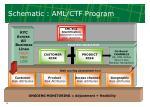 schematic aml ctf program