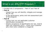 what is an aml ctf program
