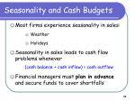 seasonality and cash budgets