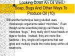 looking down an oil well soap bugs and other ways to produce oil 10