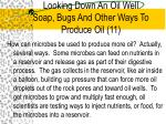 looking down an oil well soap bugs and other ways to produce oil 11