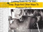 looking down an oil well soap bugs and other ways to produce oil 12