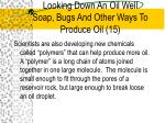 looking down an oil well soap bugs and other ways to produce oil 15
