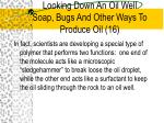 looking down an oil well soap bugs and other ways to produce oil 16