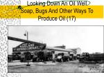 looking down an oil well soap bugs and other ways to produce oil 17