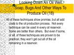 looking down an oil well soap bugs and other ways to produce oil 18