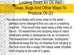 looking down an oil well soap bugs and other ways to produce oil 2
