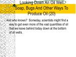 looking down an oil well soap bugs and other ways to produce oil 20