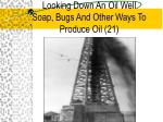 looking down an oil well soap bugs and other ways to produce oil 21