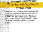looking down an oil well soap bugs and other ways to produce oil 5