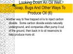 looking down an oil well soap bugs and other ways to produce oil 6