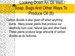 looking down an oil well soap bugs and other ways to produce oil 8