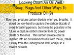 looking down an oil well soap bugs and other ways to produce oil 9