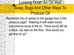 looking down an oil well soap bugs and other ways to produce oil