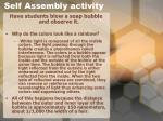 self assembly activity