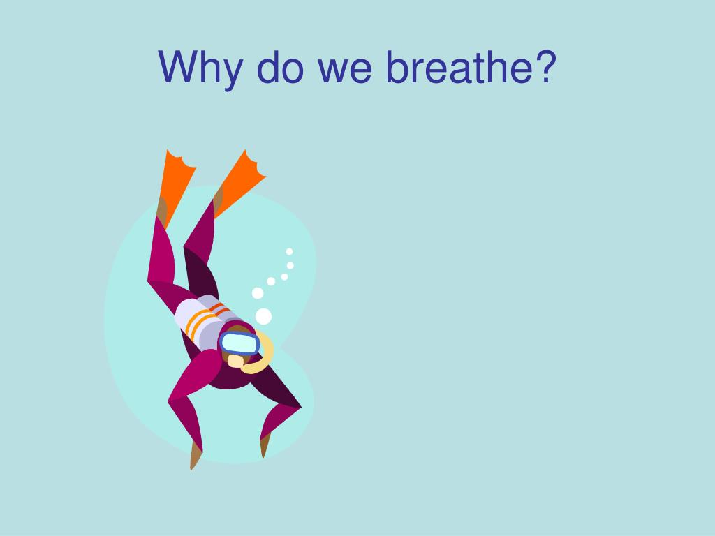 why do we breathe l.