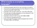 what exactly is a scripting language