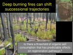 deep burning fires can shift successional trajectories