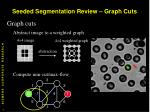 seeded segmentation review graph cuts