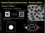 seeded segmentation review random walker